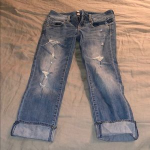 AE Artist cropped jeans